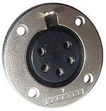 Amphenol - EP5 Female for Installation