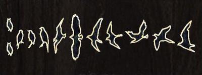 Jockomo - Fret Mark-Birds BP