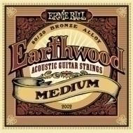 Ernie Ball - 2002 Earthwood Bronze