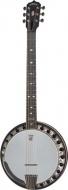 Deering - B6 Boston 6 string Banjo