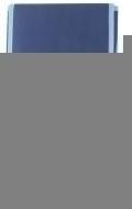 Adler Heinrich - Bag for Tenor Recorder