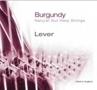 Bow Brand - Burgundy 2nd F Gut Str. No.14