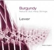 Bow Brand - Burgundy 4th E Gut Str. No.22