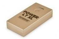 Rockboard - LT XL Power Bank GD