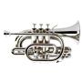 Erinevad trompetid