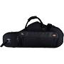 Saksofonide kohvrid/kotid